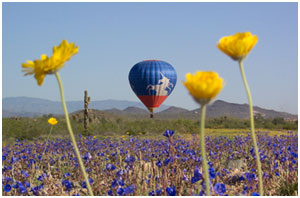 Arizona / Aspen / Colorado Springs Balloon Flights
